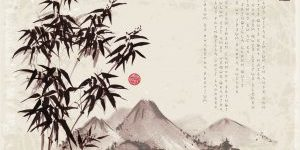 Zen (Bild: Shutterstock)